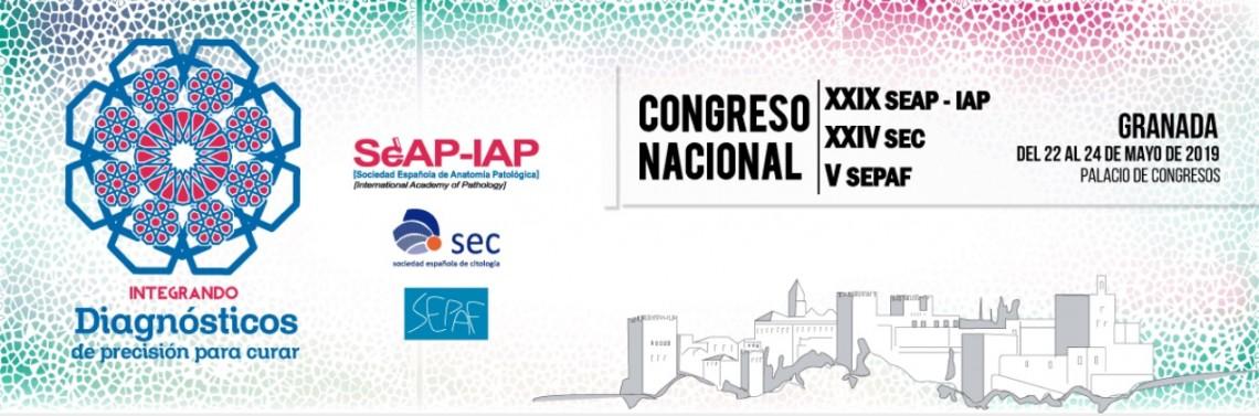 XXIX Congreso SEAP-IAP